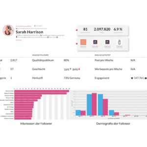 Influencer Analyse & Reporting